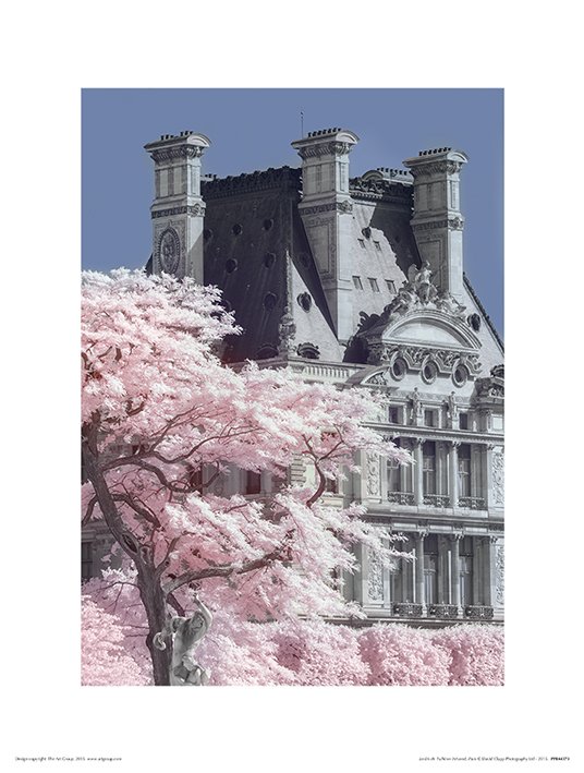 David Clapp (Jardin de Tuilieres Infrared, Paris) Art Prints