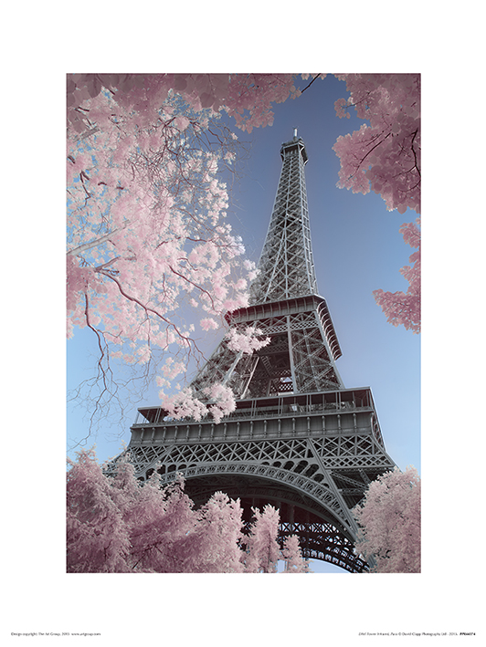 David Clapp (Eiffel Tower Infrared, Paris) Art Prints