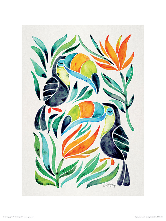 Cat Coquillette (Tropical Toucans) Art Prints
