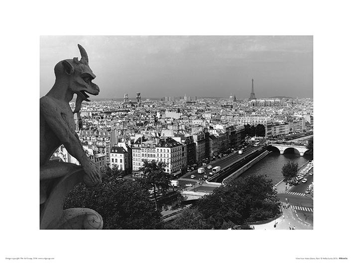Heiko Lanio (View from Notre-Dame, Paris) Art Print