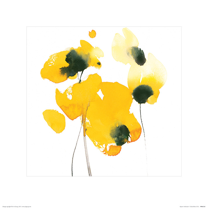David Ross (Papaver Nudicaule) Art Print