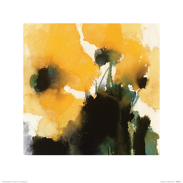 David Ross (Orange King) Art Print