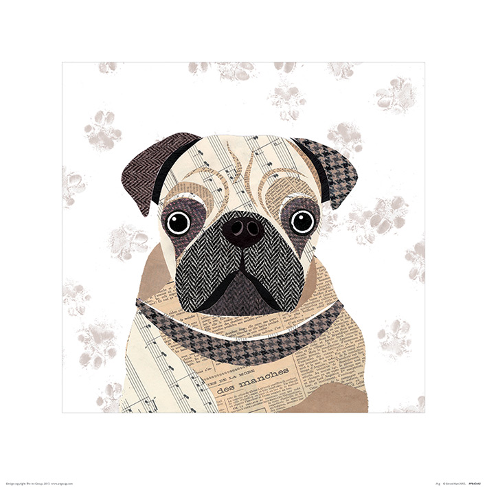 Simon Hart (Pug) Art Prints