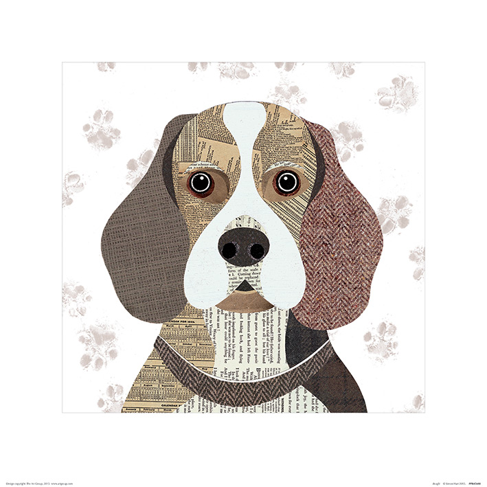Simon Hart (Beagle) Art Prints