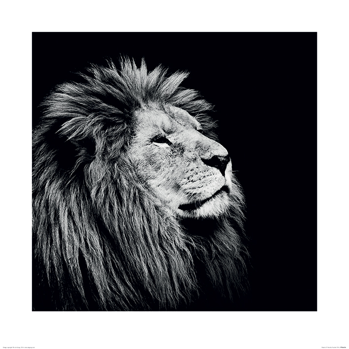 Nicolas Evariste (Majesty) Art Prints