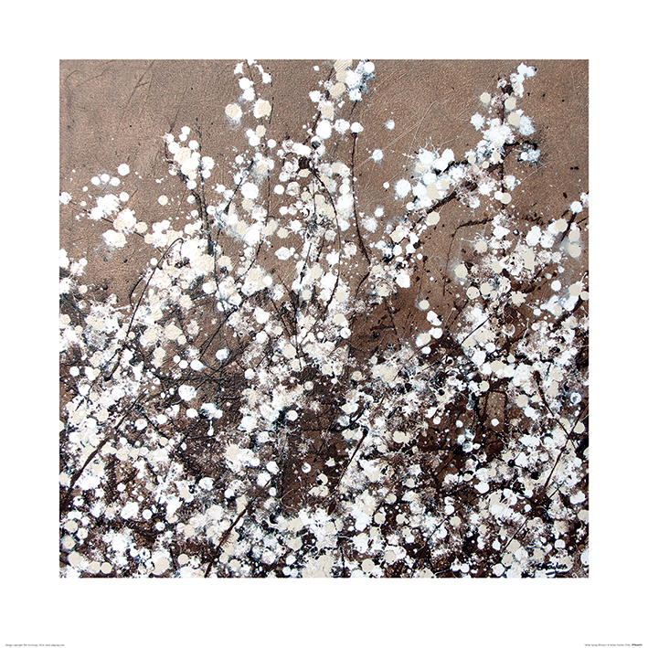 Simon Fairless (White Spring Blossom) Art Prints