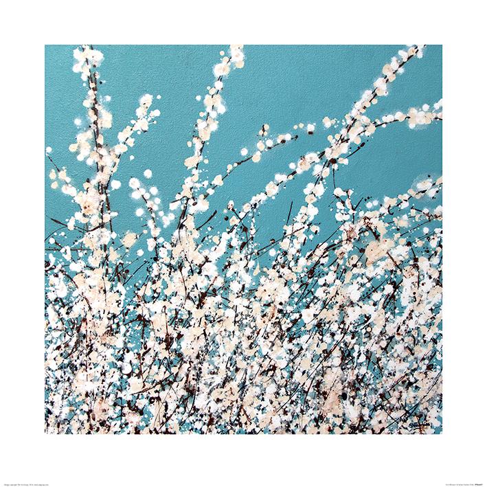 Simon Fairless (First Blossom) Art Print