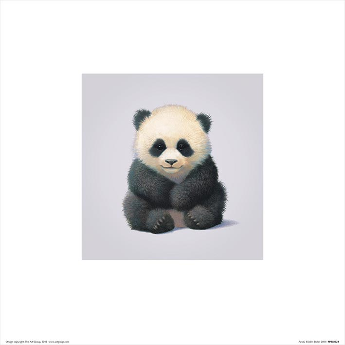 John Butler (Panda) Art Prints