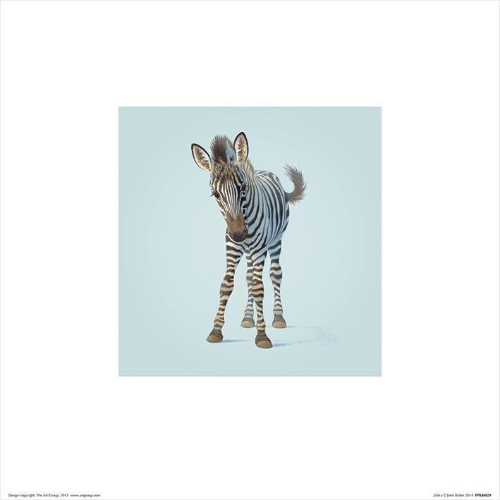 John Butler (Zebra) Art Prints