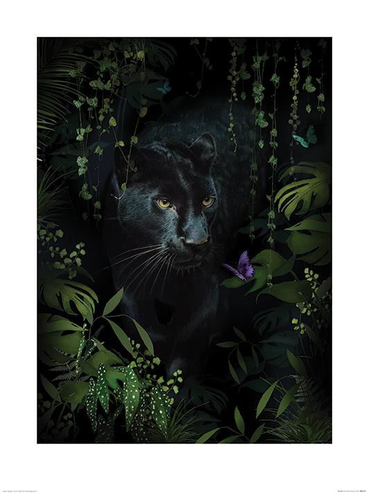 Summer Thornton (Panther) Art Prints