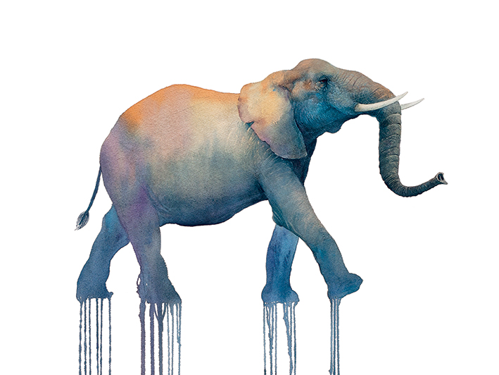 Oliver Flores (Elephant Walk) Canvas Prints
