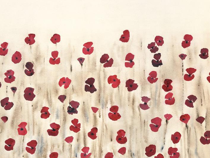 Simon Fairless (Poppy Profusion) Canvas Print