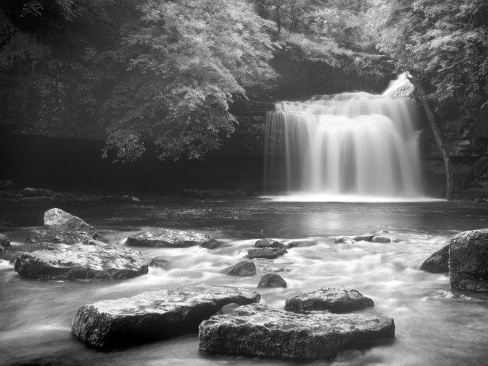 Rod Edwards (West Burton Falls, Yorkshire) Canvas Print
