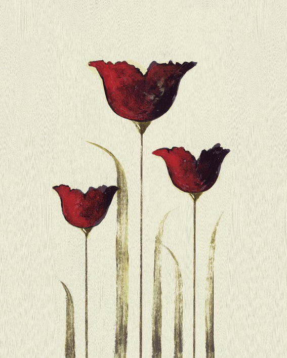 Nicola Evans (Tulips III) Canvas Prints