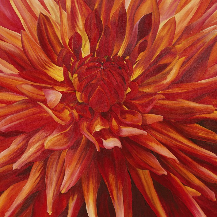 Sarah Caswell (Fabulous Orange Dahlia) Canvas Print