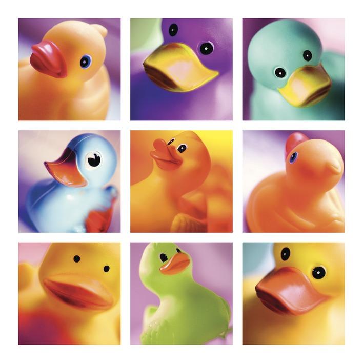 Ian Winstanley (Duck Family Portraits) Canvas Print