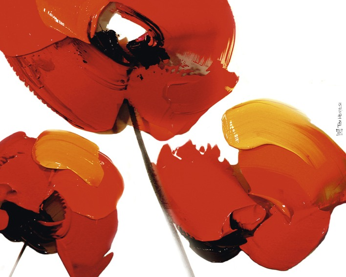 Tibi Hegyesi (Three Poppies - White) Canvas Prints