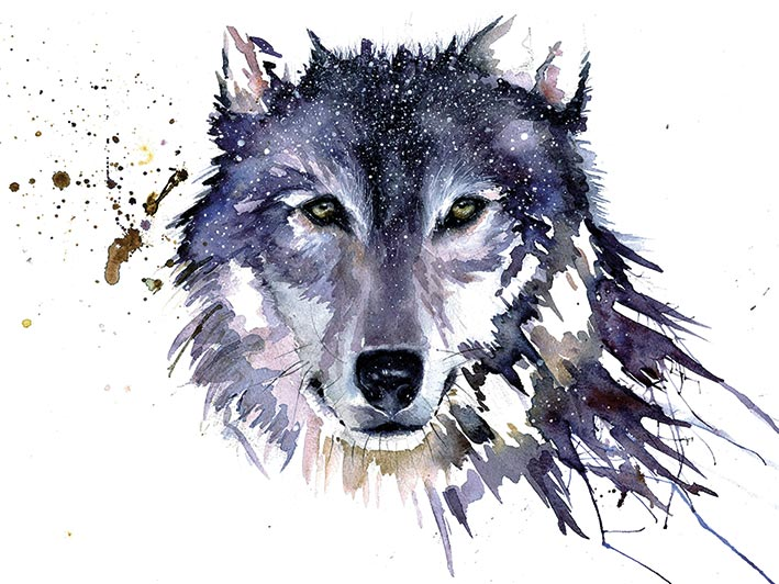 Sarah Stokes (Snow Wolf) Canvas Prints