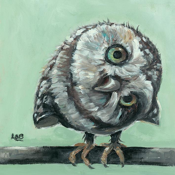 Louise Brown (Little Owl) Canvas Prints