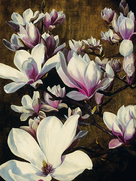 Sarah Caswell (Magnolia Silk) Canvas Print