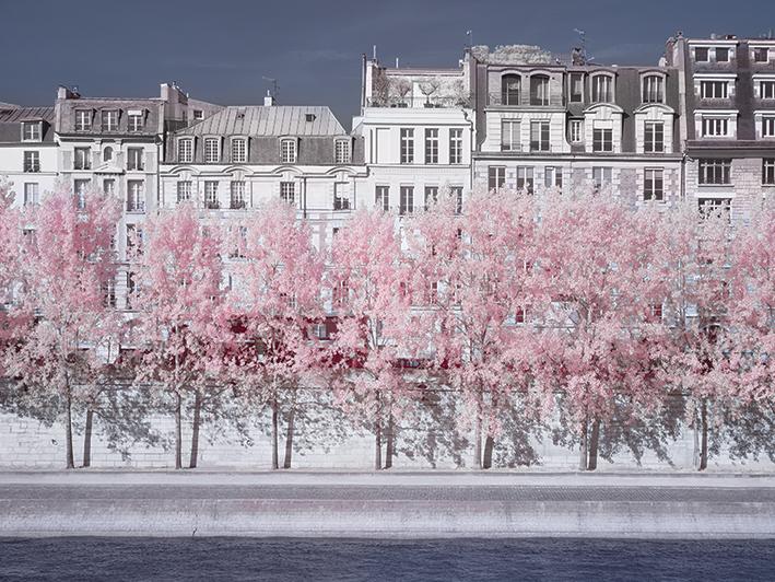 David Clapp (River Seine Infrared, Paris) Canvas Print