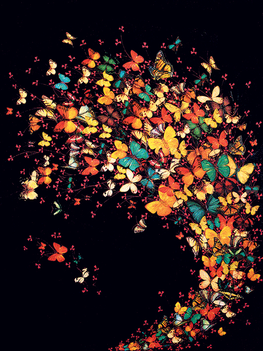 Lily Greenwood (Butterflies on Black) Canvas Prints
