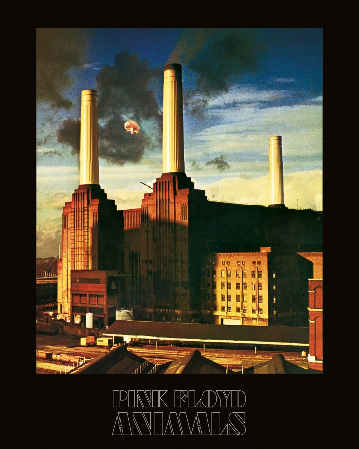 Pink Floyd (Animals) Canvas Prints