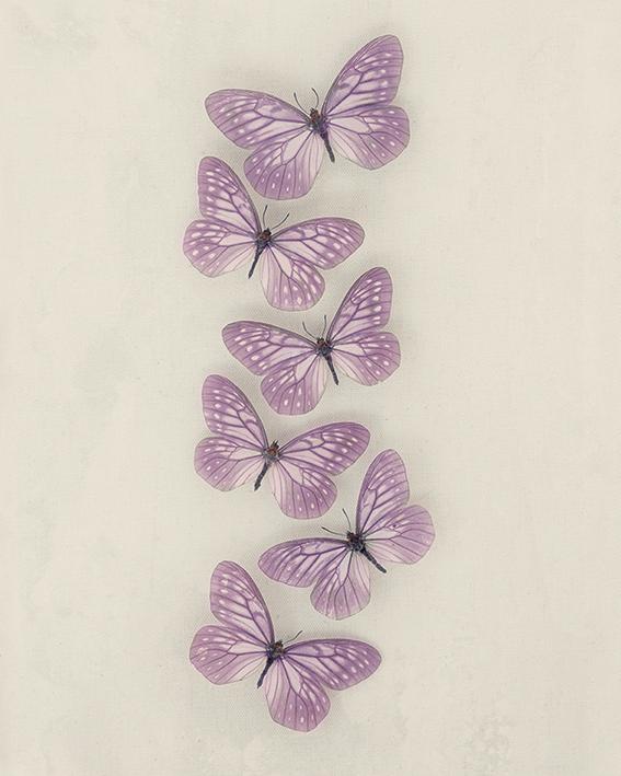 Ian Winstanley (Lilac Butterflies) Canvas Prints