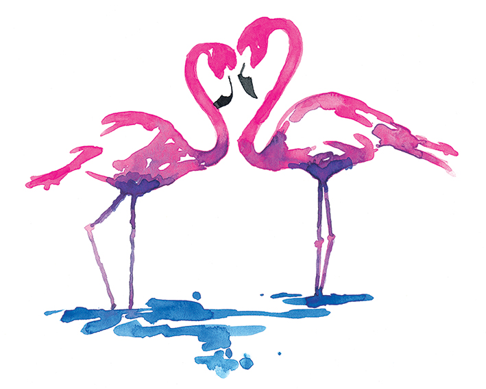 Sarah Stokes (Flamingo Study) Canvas Prints