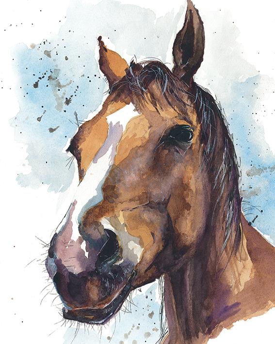 Sarah Stokes (Copper Blaze) Canvas Prints