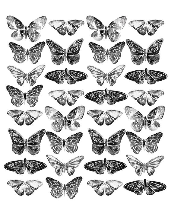 Sofie Rolfsdotter (Butterflies) Canvas Print