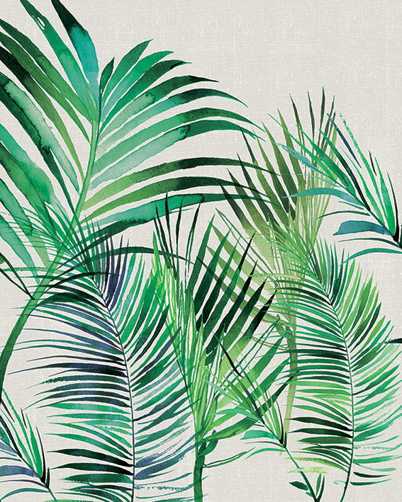 Summer Thornton (Palm Leaves) Canvas Print