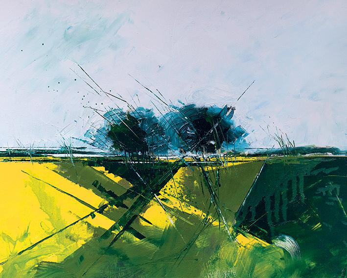Simon Howden (Rape Field Edge) Canvas Prints