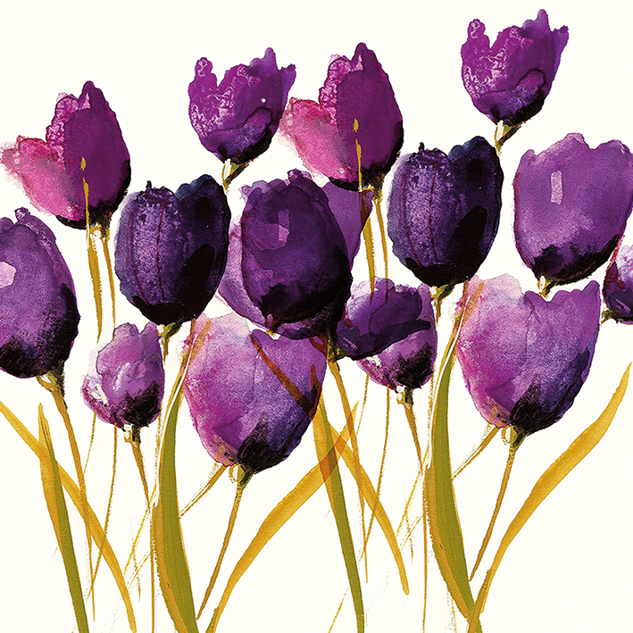 Nicola Evans (Tulips) Canvas Prints