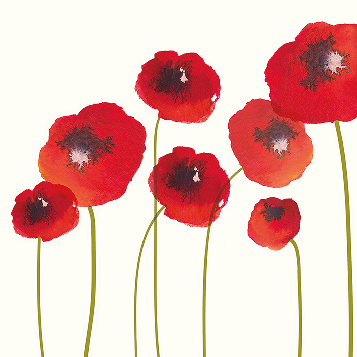 Nicola Evans (Poppies) Canvas Print