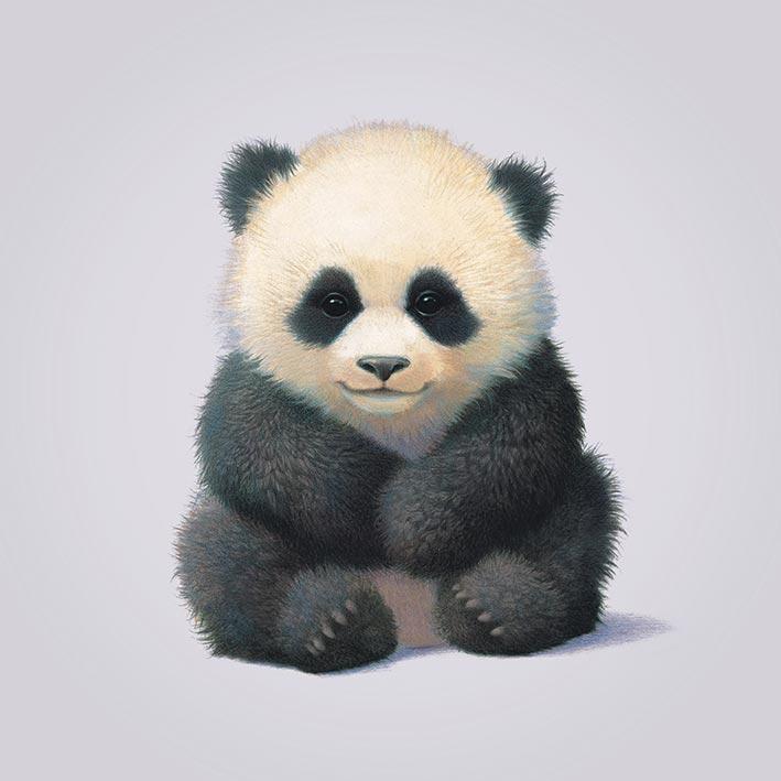 John Butler (Panda) Canvas Prints