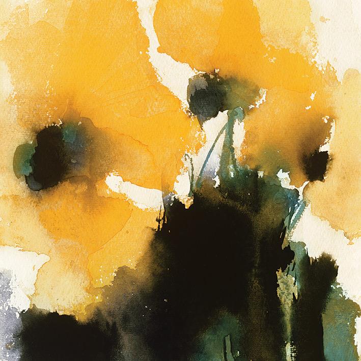 David Ross (Orange King) Canvas Prints