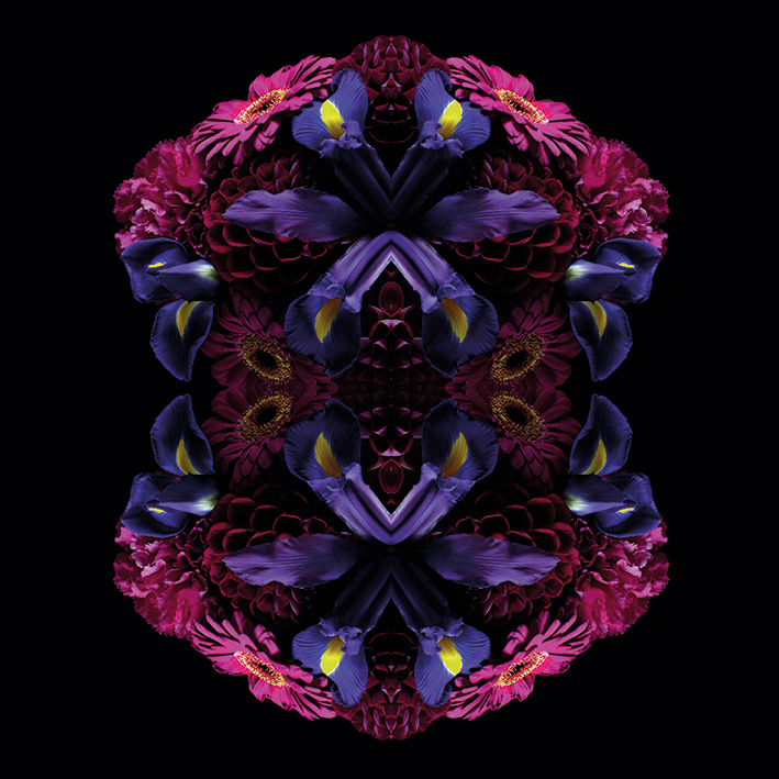 Alyson Fennell (Floral Nirvana) Canvas Prints