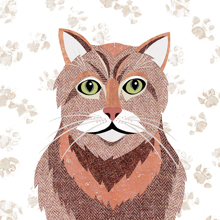 Simon Hart (Ginger Tom) Canvas Prints