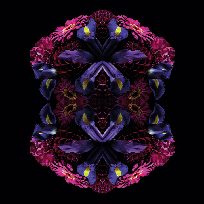 Alyson Fennell (Floral Nirvana) Canvas Print