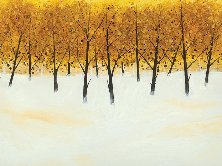 Stuart Roy (Yellow Trees on White) Canvas Prints