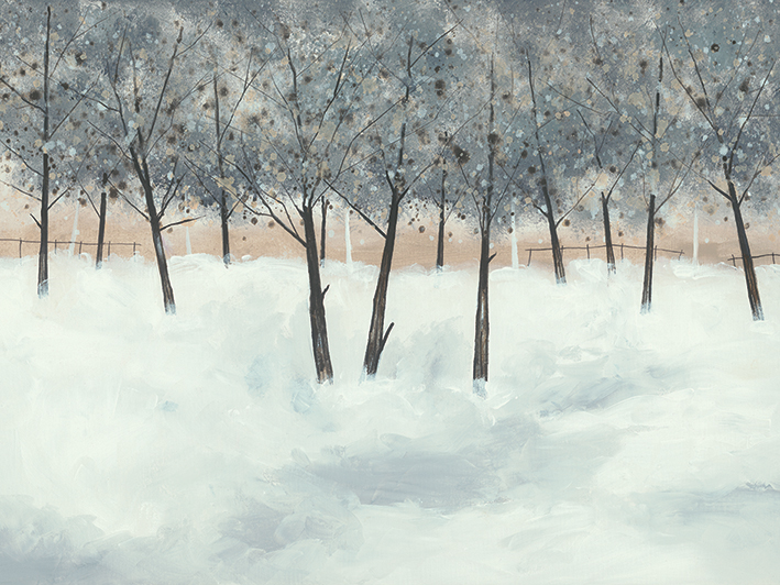 Stuart Roy (Silver Trees on White) Canvas Print