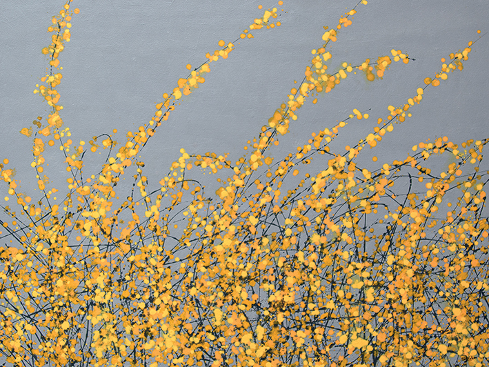 Simon Fairless (Yellow Blossom) Canvas Print
