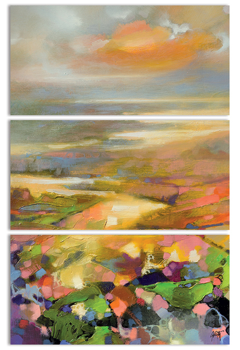 Scott Naismith (Highland Terrain) Canvas Triptych